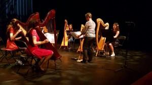harp ensemble WAK 28 mei 2016
